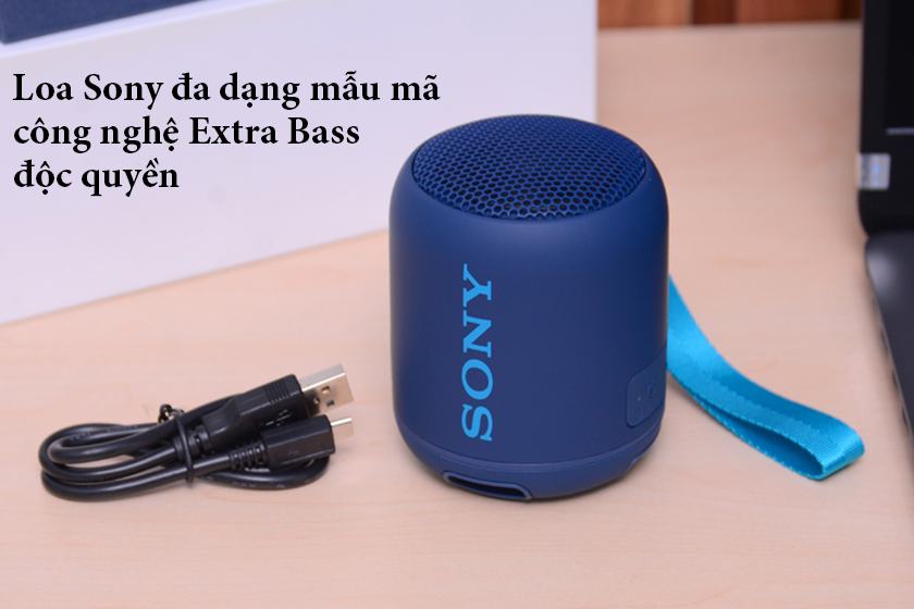 Loa bluetooth sony